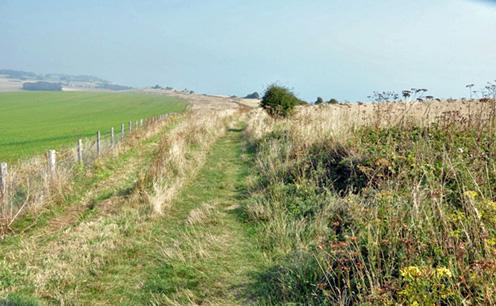 Cliff near St Margaret's East of Dover