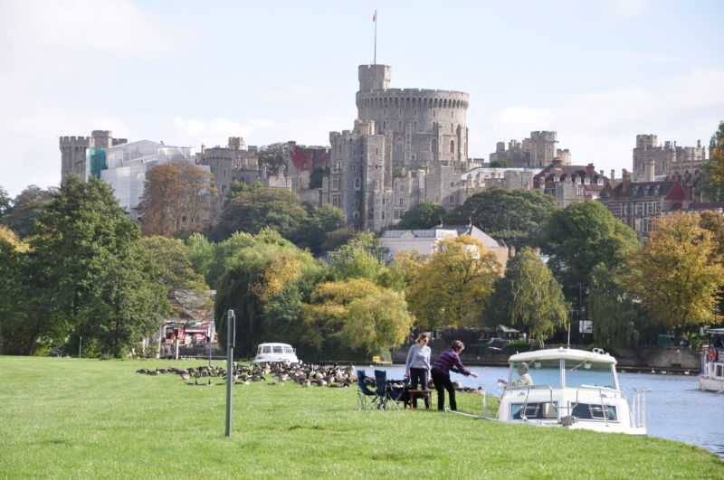 Windsor Castle from the river Thames with geese. The castle was visited by Sisi and her son Crown Prince Rudolph